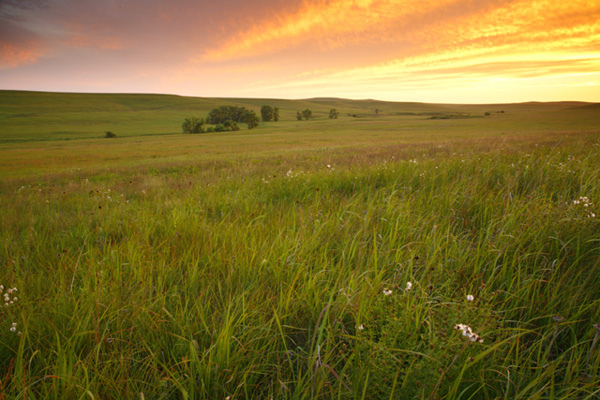 Flint Hills Natl Scenic Byway TravelKS