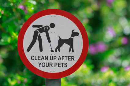 Pet poo clean up