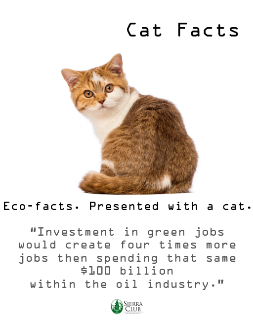 Cat fact_green jobs