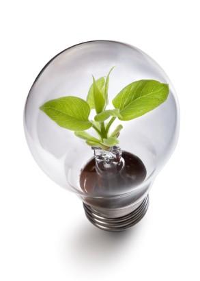 Green Idea