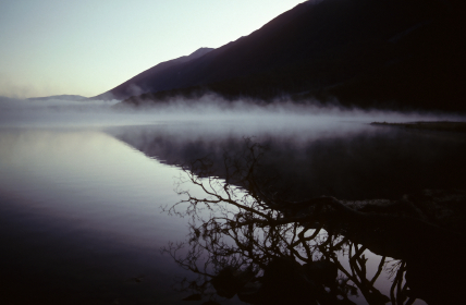 Early morning fog on lake