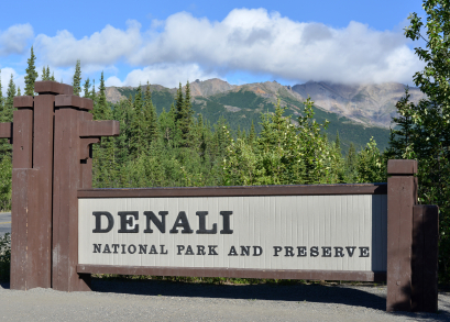 Denali National P